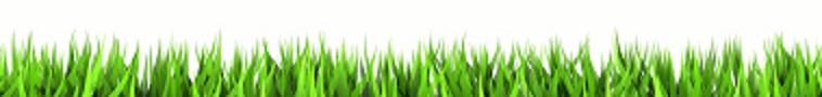 green grass crp